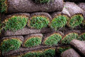 Rolls of sod fresh grass ready to lay Royalty Free Stock Images