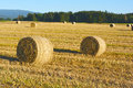 Rolls of straw Royalty Free Stock Photo