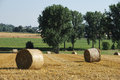 Rolls of straw in the fields sunny belgian Royalty Free Stock Image
