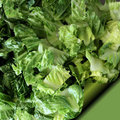 Romaine Lettuce - Recipe Page Royalty Free Stock Photo