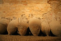 Roman amphora arena colosseum in pula croatia Stock Photography