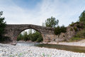 Roman bridge ancient in the north of aragon spain valle de hecho Royalty Free Stock Image
