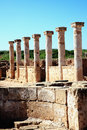 Roman columns at the paphos archaelogical park cyprus Stock Photo