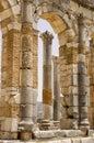 Roman columns at Volubilis, Morocco Stock Images