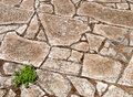 Roman floor Stock Image