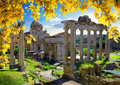 Roman Forum in autumn Royalty Free Stock Photo
