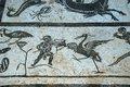 Roman mosaic italica seville flooring in the neptune building province andalusia spain western europe Stock Photos