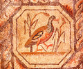 Roman mosaic of a walking duck Stock Image