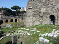 Roman ruins, Rome Italy Royalty Free Stock Photo