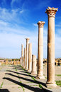 Roman ruins of timgad in algeria Royalty Free Stock Images