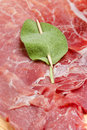 Roman saltimbocca slices of veal with italian ham and sage leaves Royalty Free Stock Image