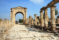 The Roman Triumphal Arch and Road (Tyre- Lebanon) Royalty Free Stock Photo