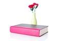 Romance Novel Royalty Free Stock Photo