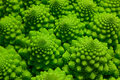 Romanesco broccoli cabbage marco Stock Photos