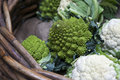 Romanesco cauliflower with its fractal shapes and Fibonacci sequ