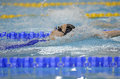 Romanian international swimming championships swimmer compete during the held between th and th of july at dinamo sports venue Royalty Free Stock Photography