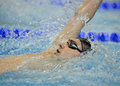 Romanian international swimming championships swimmer compete during the held between th and th of july at dinamo sports venue Stock Image