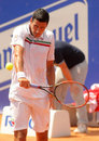 Romanian tennis player Victor Hanescu Stock Photos