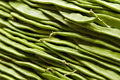 Romano Beans close-up Royalty Free Stock Photos