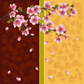 Romantic background with sakura - Japanese cherry Royalty Free Stock Photo