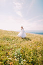 Romantic bride posing on the golden autumn field with small flowers. Hill landscape at background Royalty Free Stock Photo