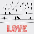 Romantic card birds on the wires for valentine day Stock Image