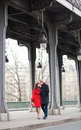 Romantic couple kissing on the Bir-Hakeim bridge Stock Photos
