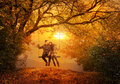 Romantic couple swing in the autumn park Royalty Free Stock Photo
