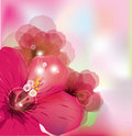 Romantic flower background Royalty Free Stock Photos