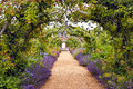Romantic garden full of flowers in bloom colourful english summer flower with a path under archway Stock Images