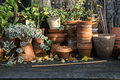 Romantic idyllic plant table in the garden with old retro flower pot pots, tools and plants Royalty Free Stock Photo