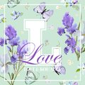 Romantic Love T-shirt Design with Blooming Iris Flowers and Butterflies. Floral Postcard Invitation Fabric Background Template Royalty Free Stock Photo