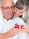 Romantic mature  couple giving a gift Royalty Free Stock Image
