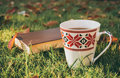 Romantic mood. Fascinating book and a hot Cup of fragrant tea in an autumn garden Royalty Free Stock Photo