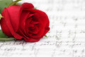 Romantic music rose piano sheet script with a deep red and notations and musical notes on the paper a metaphor for or love songs Stock Photo