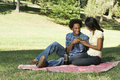 Romantic picnic. Royalty Free Stock Photo