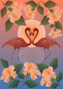 Romantic red flamingos and the moon Stock Images