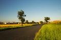 Romantic road between fields leading to village Keblice in Ceske stredohori region in Czech republic