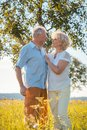 Romantic senior couple holding hands while walking together Royalty Free Stock Photo