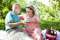 Romantic Seniors on a Picnic Stock Image