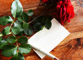 Romantic shot with blank page and roses beautiful of a golden pen surrounded by on an antique wooen table copy space image Royalty Free Stock Image