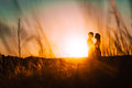 Romantic silhouette couple standing and kissing on background summer meadow sunset Royalty Free Stock Photo