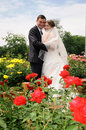 Romantic wedding couple Stock Photography