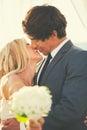 Romantic wedding couple beautiful in outdoor kissing Stock Photos