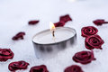 Romantic Winter Tea Light On Ice Surrounded By Rose Bloom Royalty Free Stock Photo