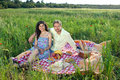 Romantic young couple enjoying a picnic in the countryside sitting in grassy meadow on red and white checked rug smiling at Stock Images