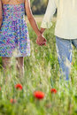 Romantic young couple holding hands on a date as they stroll through poppy field in the summer sun close up view from behind of Royalty Free Stock Images