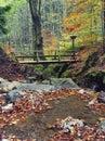 Romantischer Rivulet mit Brücke Stockbild