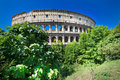 Rome Colosseum Royalty Free Stock Image