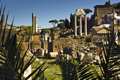 Rome. Forum Romanum Stock Images